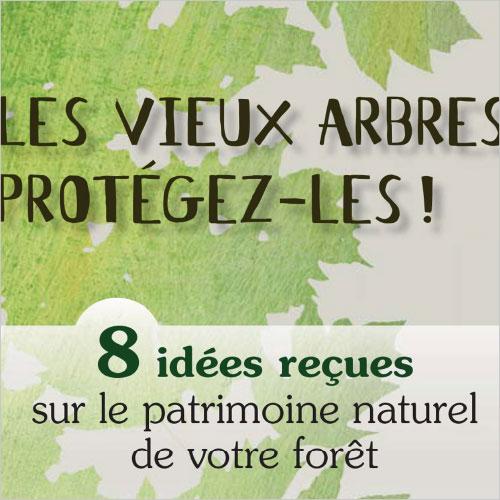 CENTRE RÉGIONAL DE LA PROPRIÉTÉ FORESTIÈRE PACA